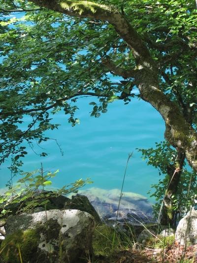Lac en Auvergne - Lac Pavin